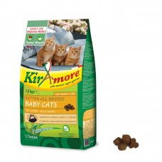 KIRAmore – KITTEN ALL BREEDS BABY CATS | Secco 1,5 KG GATTO